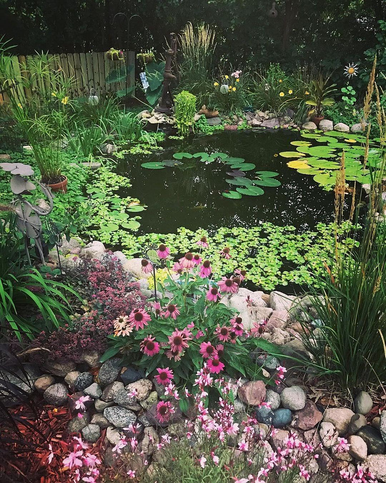 Pond with flowers
