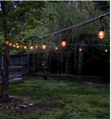 String lights over a yard