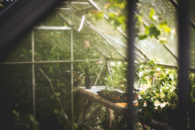 Storage Shed Greenhouse