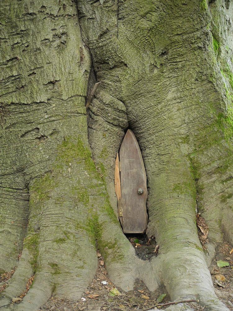 Door on a treehouse