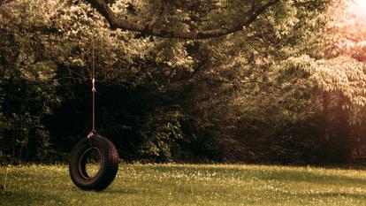 tireswing in backyard