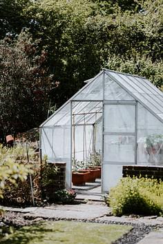 greenhouse in backyard