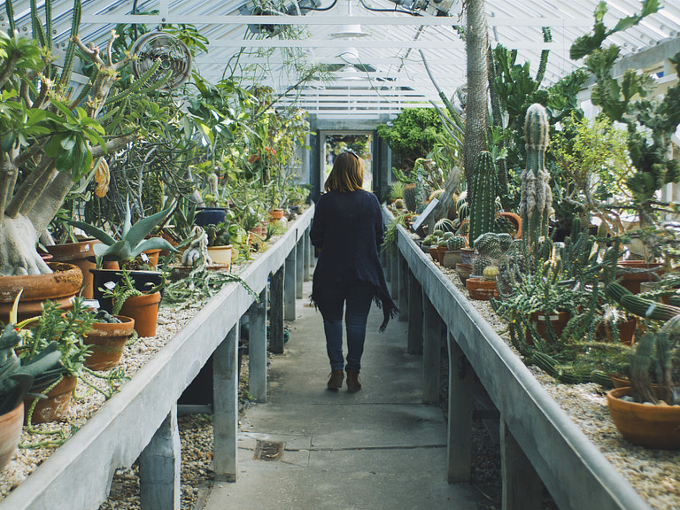Woman in a cactus greenhouse