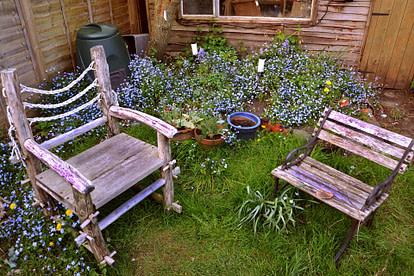 rustic chair in backyard
