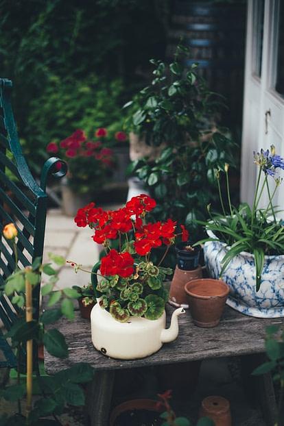 unique planters in garden