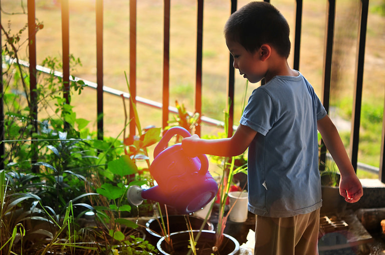 Kid watering a plant