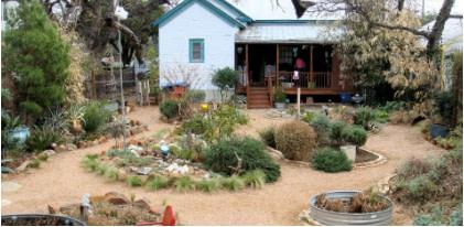 Backyard xeriscape