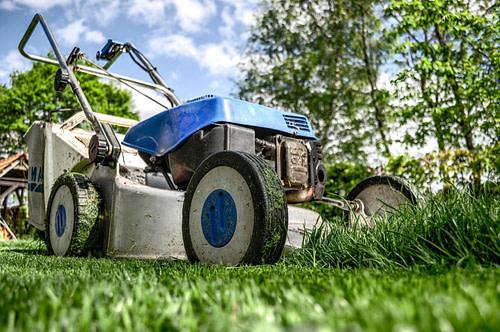 Lawn mower in a lawn